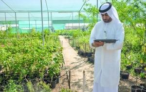 الزراعة السعودية: 10 أيام على انتهاء مهلة استيراد الخضراوات دون إذن إلكتروني